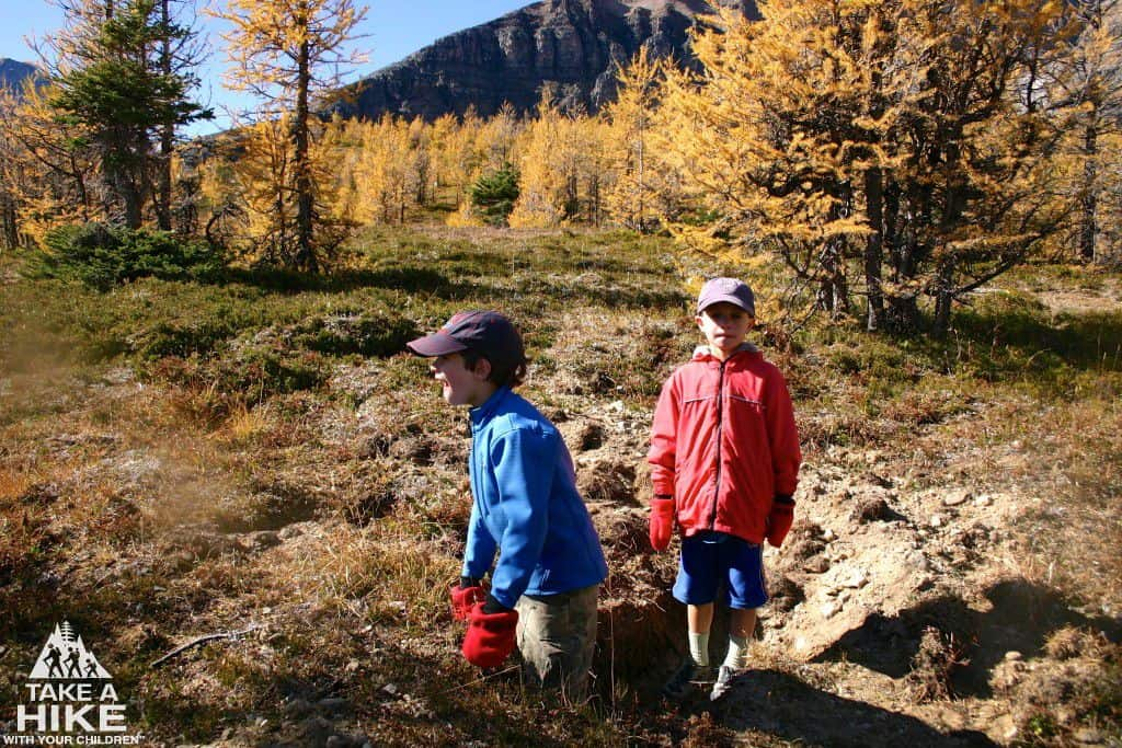 October 2009, Larch Valley Hike, Morgan and Justin standing in a Grizzly Bear dig