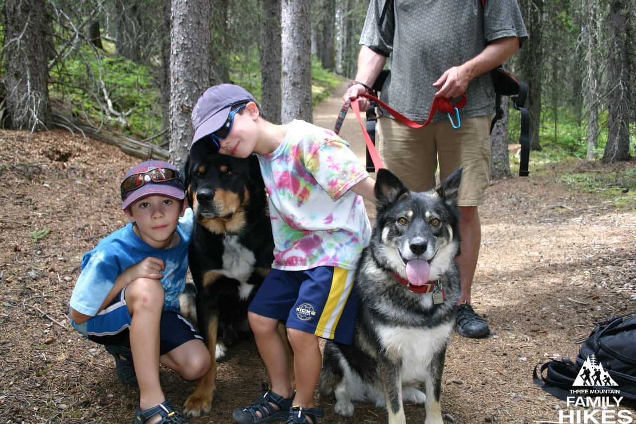 two boys on a hiking trail with two dogs.