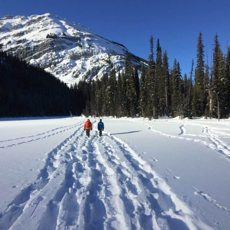 Hogarth Lakes  Snowshoe- Easy, Family-friendly, Ideal for Beginners