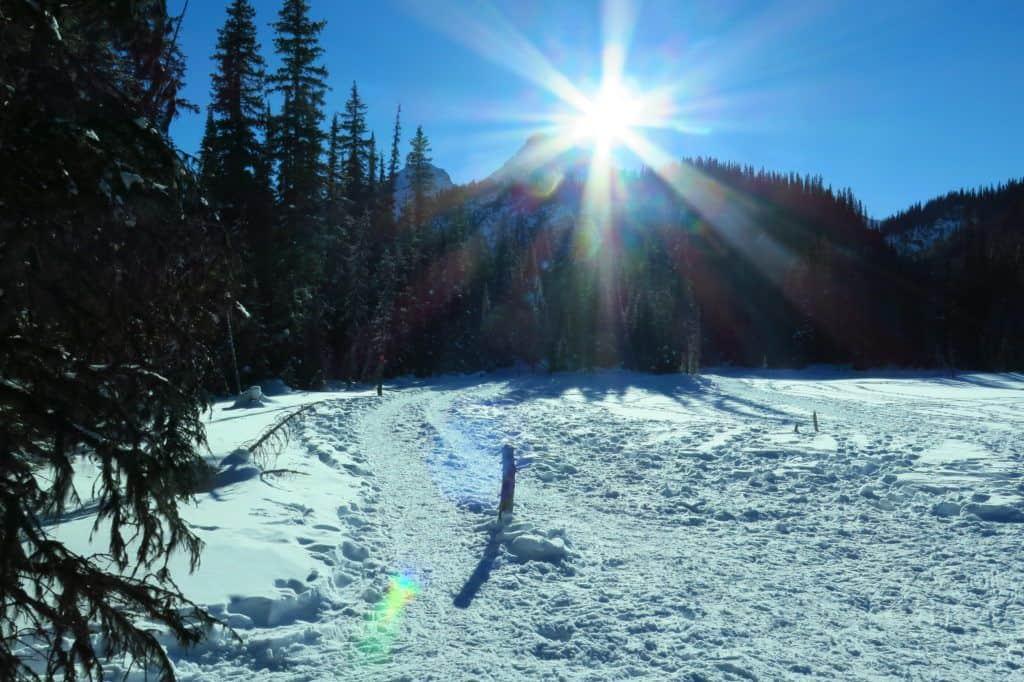 Hogarth Lakes Snowshoe Trail in Kananaskis, Alberta