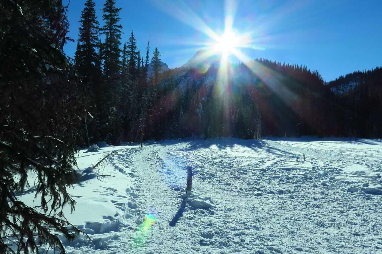 Take A Hike With Your Children, Three Mountain Family Hikes, Kananaskis, Hogarth Lakes Snowshoe