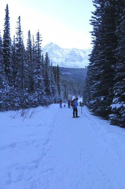 Three Mountain Family Hikes, Take A Hike With Your Children