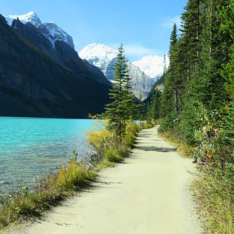 Family Friendly Fall Hikes- Lake Louise Shoreline