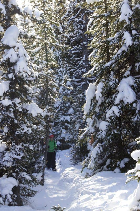 Winter snowshoe activity near Chester Lake in Alberta