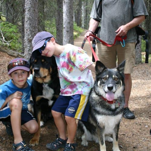 two boys with two to dogs on a hiking trail