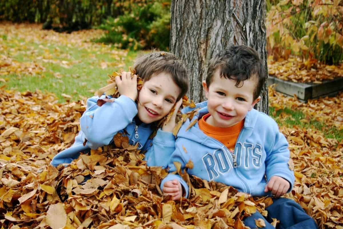 two boys playing in fall leaves