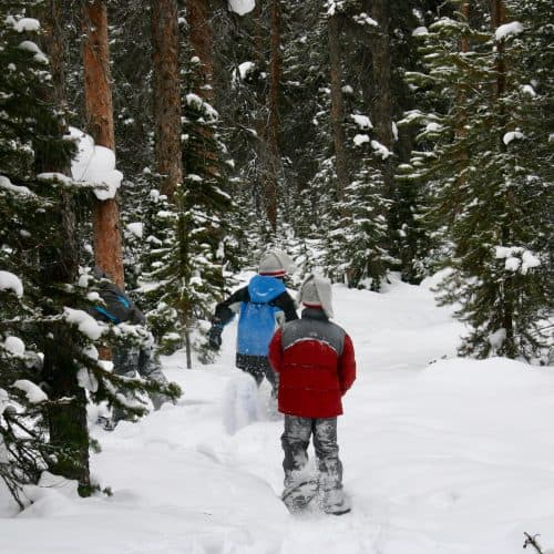 Two boys snowshoeing