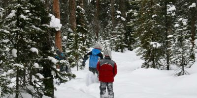 Snowshoeing 101: A Comprehensive Gear Guide for Beginners