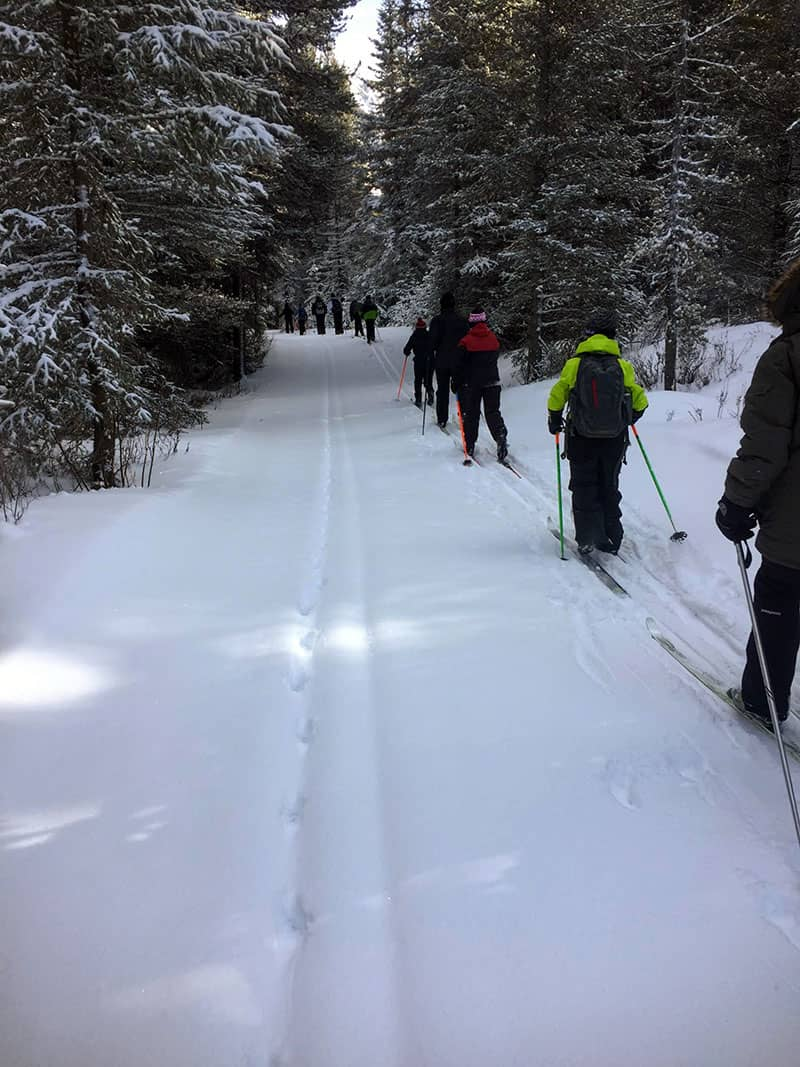 cross country skiing lesson group on the trail