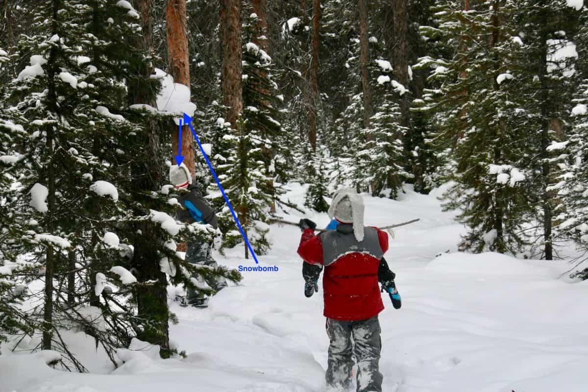 Snowshoeing, Lake Louise, Banff National Park