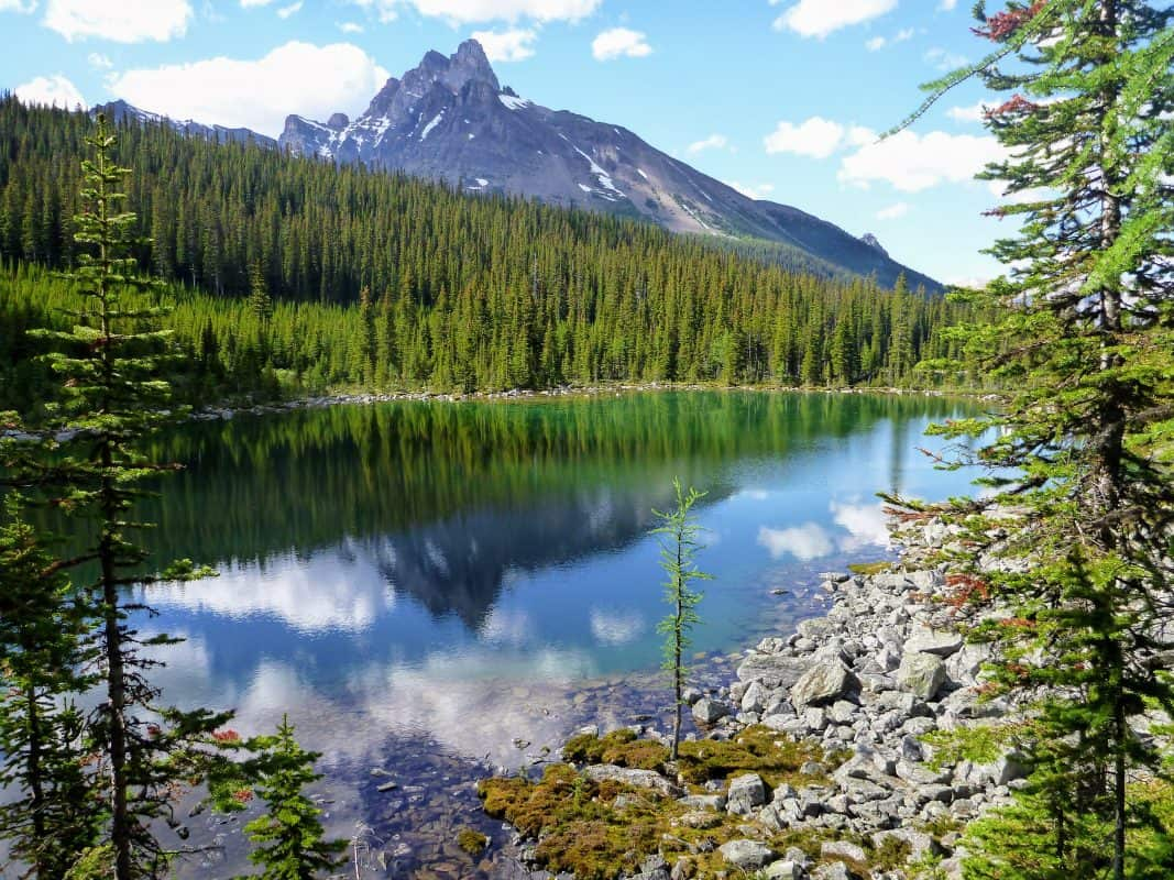 This image has an empty alt attribute; its file name is Lake-OHara-Morning-Glory-lakes-1-1067x800.jpg