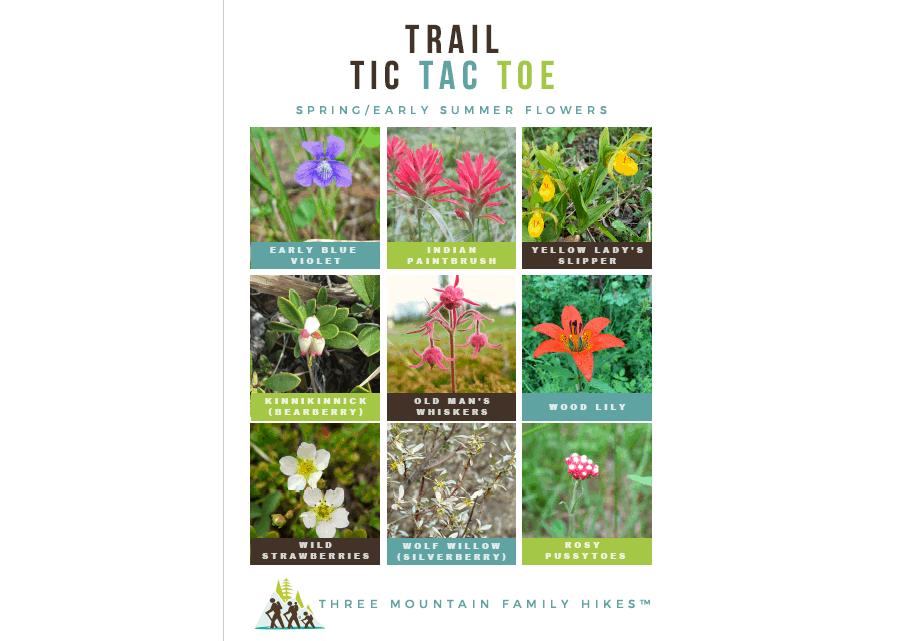 Trail Tic Tac Toe